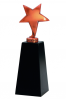 The Star Resin Award